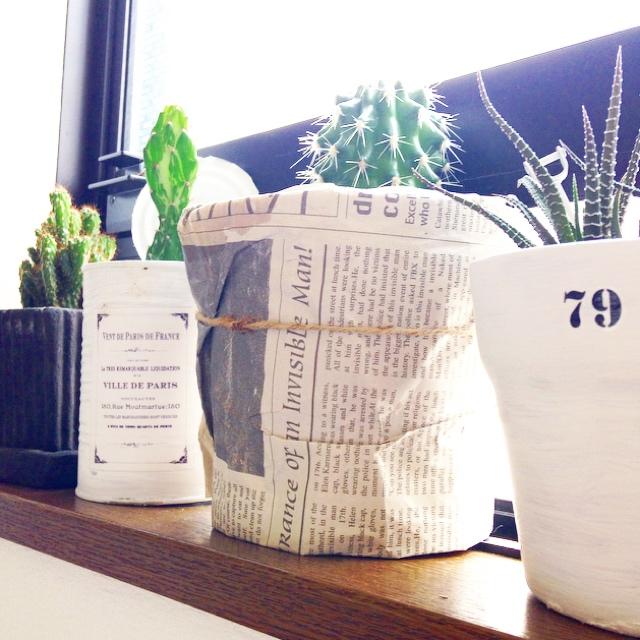 アンティークニュースペーパーを植木鉢に利用