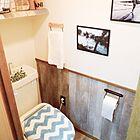 ニトリとしまむら、我が家のトイレはどっち派?!