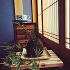 これぞ日本の心。盆栽を取り入れた素敵なインテリア