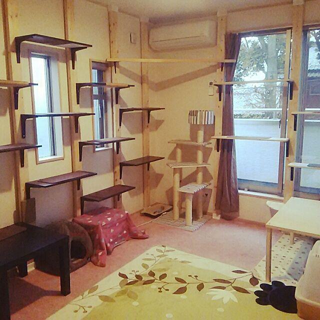 Overview,ねこ部屋,キャットウォークDIY,DIY,猫のため,ねこのいる日常,ねここたつ,ねこと暮らす。,猫タワー,爪とぎ,猫の場所,ディアウォール Tabasaの部屋