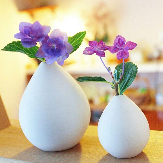 Lounge,一輪挿し,植物が好き,暮らしを楽しむ,庭の花,植物,アジサイ,紫陽花,花のある暮らし,花瓶 naho81078の部屋
