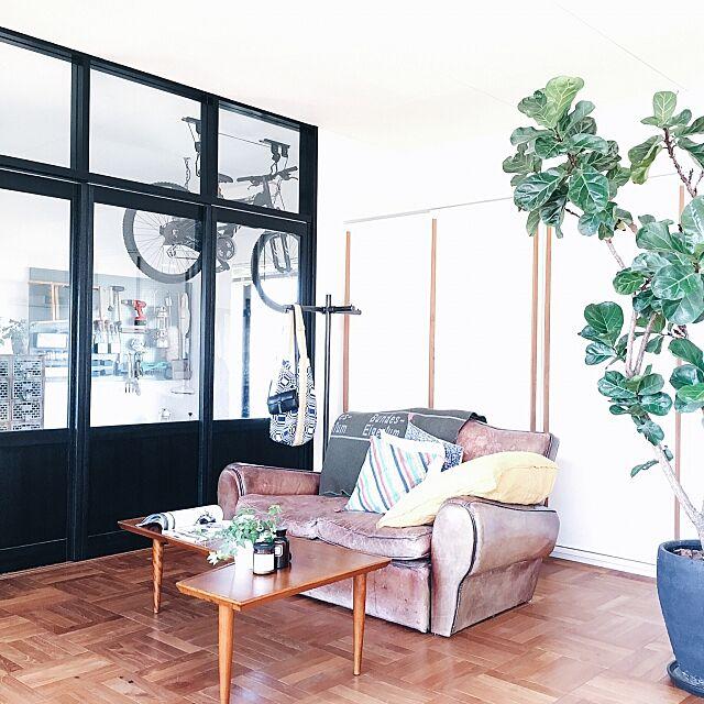 Lounge,グリーンのある暮らし,ナチュラル,アンティーク,北欧,観葉植物,インダストリアル,ヴィンテージ ik_journalの部屋