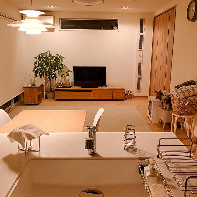 Lounge,ポリ袋スタンド,シンク,夜のリビング,リセット完了,リセット,かご収納,かご,タイルカーペット,掃除のしやすい家,わんこと暮らす,テレビボード,観葉植物,床生活,照明,北欧ナチュラル,ロールスクリーン,ニトリ,カインズホーム 17の部屋