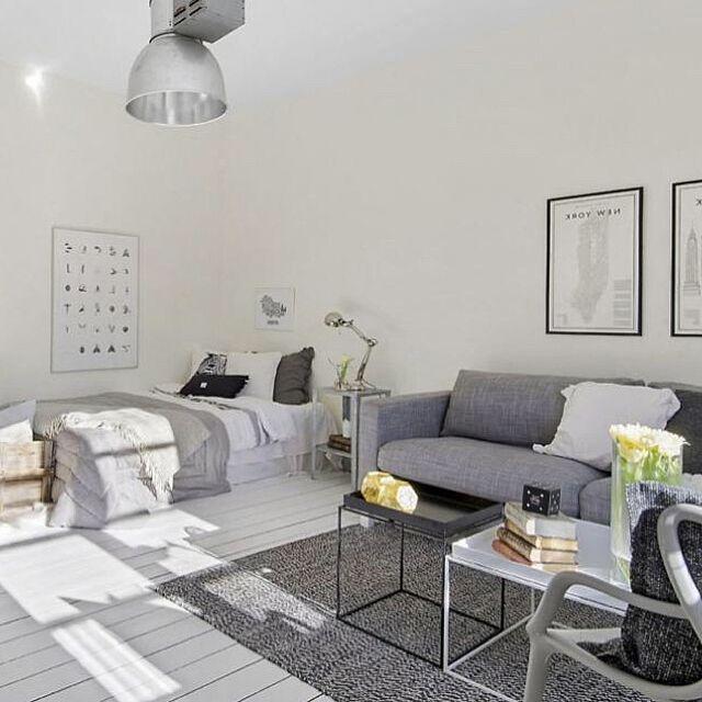 Overview,DIY,ハンドメイド,北欧,ソファ,照明,一人暮らし,多肉植物,雑貨,グレー&ホワイト TakuyaAdachiの部屋