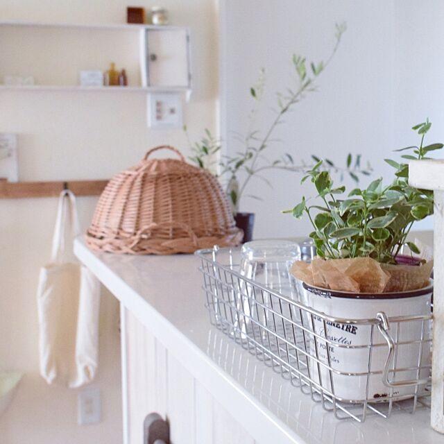 Kitchen,ワイヤーバスケット,無印良品,室内グリーン,グリーンのある暮らし,ブログしています♡,IG→gemini_natural,シンプル×ナチュラル×ちょっとほっこり,ナチュラル,ダイソー,100均,DIY,カウンターリメイク,カッティングシート Geminiの部屋