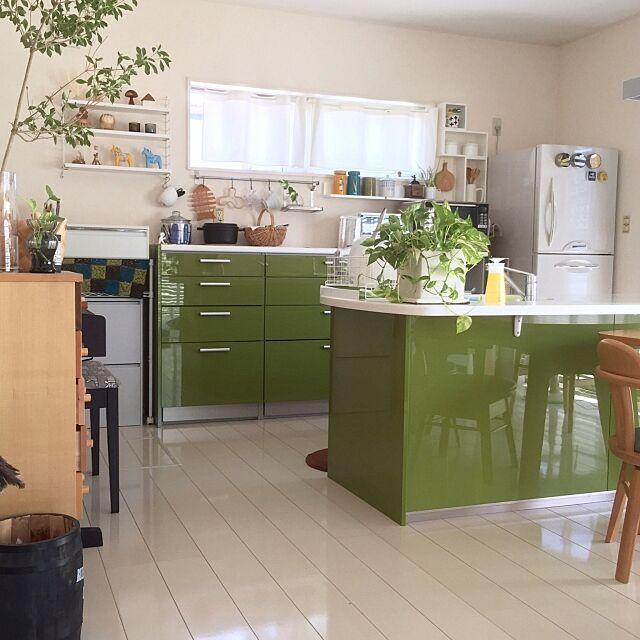 Overview,NO GREEN NO LIFE,YAMAHAのキッチン,リビングからキッチンの眺め,ドウダンツツジ,ポトス,stringpoket,北欧インテリア,北欧,北欧雑貨,スクラビングバブル除菌,インテリアグリーン,ニトリの鉢 SAYOの部屋