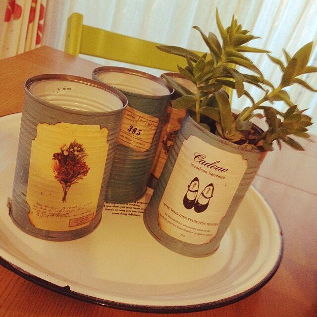 Kitchen,セリアのアクリル絵の具 アクアグリーン,ラベルはサンキュ!の付録,リメイク缶,セリア,多肉植物 寄せ植え,多肉植物,観葉植物 maicoの部屋