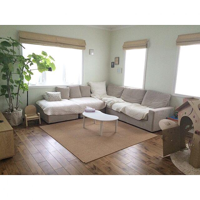 Lounge,朝のリビング,ウンベラータ,定点観測 may16の部屋