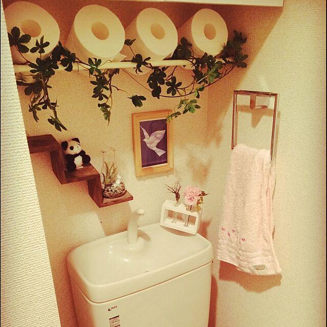 Bathroom,雑貨,100均,3Coins,ダイソー,観葉植物,DIY,カフェ風,リケジョ,トイレットペーパー収納,トイレットペーパーの収納 yuki0c0chiの部屋