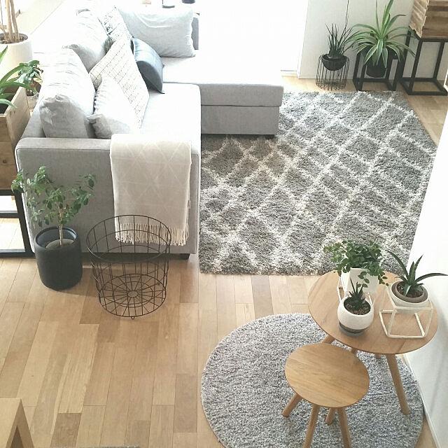 Overview,ラグ,ソファ,グリーンのある暮らし,観葉植物,リビングインテリア,無印良品,IKEA,ニトリ,Instagram→chie_iiii,いつもいいねやコメントありがとう♡,フォロワーさんに感謝♡,コメント嬉しいです♪,気軽にコメントしてね~! chieの部屋