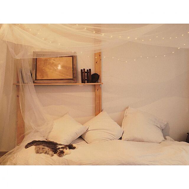 Bedroom,イルミネーションライト,天蓋,一人暮らし,額縁,蚤の市戦利品,DIY,ライト,クッション,照明,がくぶち,古道具,カーテン,ベッド b_to_uの部屋