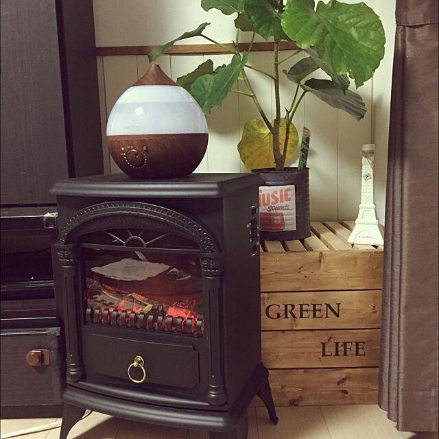 Lounge,観葉植物,加湿器,ニトリ暖炉型ヒーター,ニトリ,ステンシル,腰壁,DIY,大好きエッフェル塔 saffyの部屋