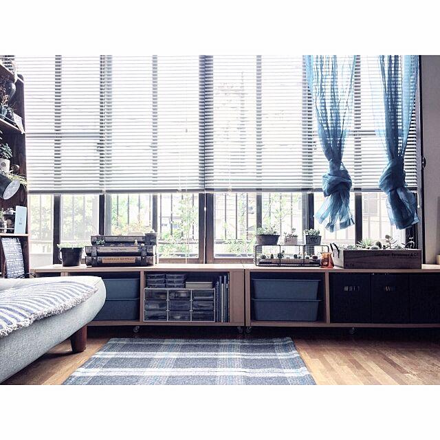 収納ボックス,ダイソー,ラグ,IKEAカーテン,B-COMPANY,リクライニングソファ,IKEA,シースルーカーテン,ブラインド,Overview,窓辺のインテリア,窓辺のグリーン,窓辺,窓辺の風景,カラーボックス,カラーボックス 横置き kao.320の部屋