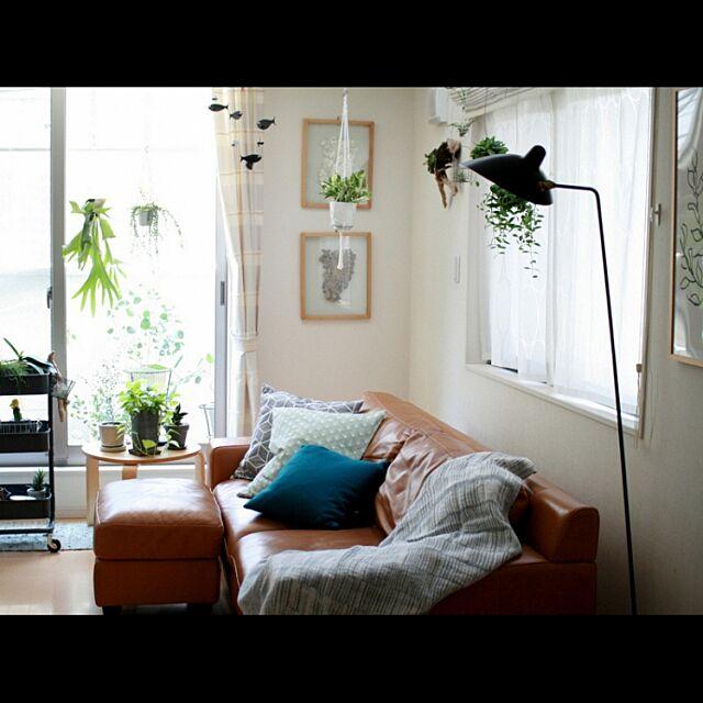 Lounge,観葉植物,ブログ更新しました♡,セルジュムーユ,H&M HOME クッションカバー,モビール,NO GREEN NO LIFE koenyokoの部屋