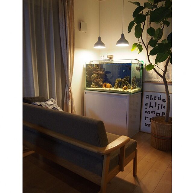 Lounge,アクアリウム,unico,水槽,観葉植物,アルテシマ,ペット,海水魚,無印良品,snug.studio emimekkoの部屋