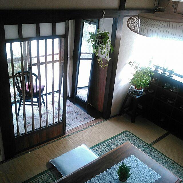 Overview,築40年以上,DIY,和風,グリーン増やしたい♪,日本家屋,セルフリノベーション,建具 amelliaの部屋