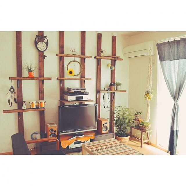 ディアウォール,DIY,ツーバイフォー,Overview,賃貸DIY,ディスプレイ棚DIY,観葉植物,2×4 ibiki7の部屋