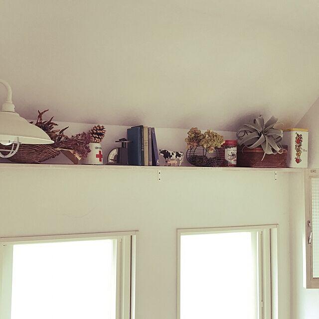 On Walls,階段棚,フェイクグリーン,DIY,レトロ,アンティーク Kenoの部屋