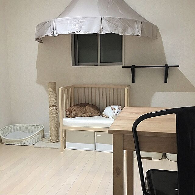 Overview,猫のいる部屋,猫のいる生活,にゃんこ,にゃんこスペース,猫部屋,真面目に家pic,DIY Macaroniの部屋