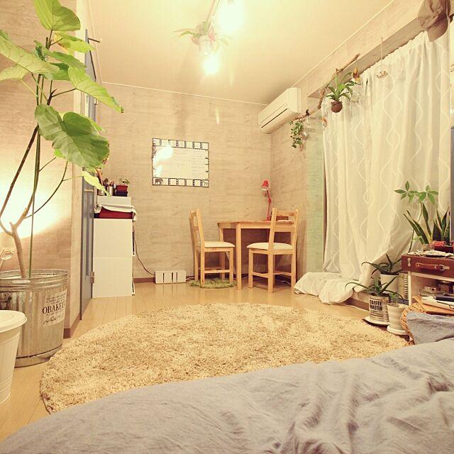 Overview,男前インテリア,西海岸インテリア,塩系インテリア,観葉植物,一人暮らし,照明 YASUNOの部屋