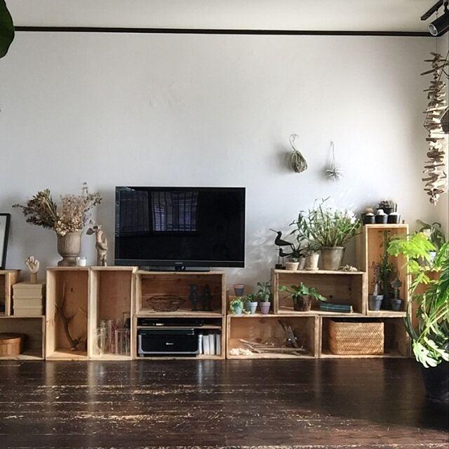 Lounge,植物のある暮らし,りんご箱,TV,無垢の床,漆喰壁 romimushiの部屋