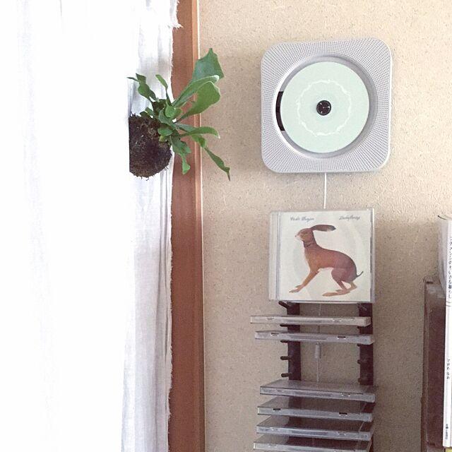 On Walls,無印CDプレイヤー,無印良品,Muji,古道具,アイアン,コウモリラン,コウモリラン吊るしました kaedeの部屋
