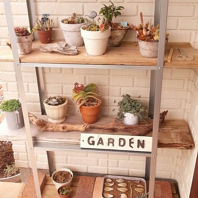 Entrance,多肉の冬越し,ガーデニングDIY,植物,多肉植物,IKEA,雑貨 mogの部屋