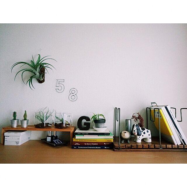 My Shelf,無印良品,植物のある暮らし,古道具,リサラーソン,グリーンのある暮らし Igako7121の部屋