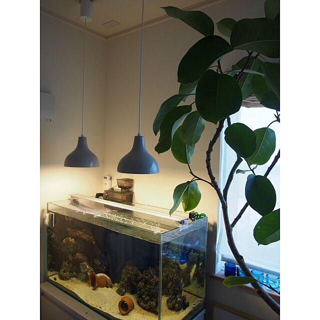 My Desk,ペンダントライトアルミ・S,無印良品 emimekkoの部屋