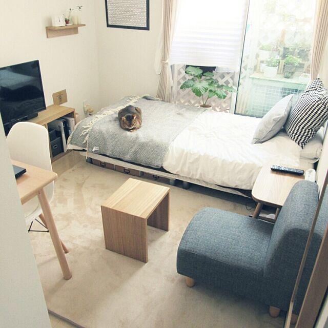Overview,一人暮らし,賃貸,ワンルーム 狭い,simple,14㎡,ソファ購入♡,うんべちゃん,ねこのいる風景,ねこと暮らす。 komugiの部屋