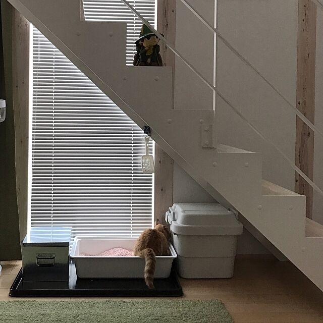Lounge,無印良品の家,IKEA,猫のトイレ,無印良品,猫のいる部屋,猫のいる暮らし,ブラインド,スケルトン階段,ポリプロピレン頑丈収納ボックス,トタンボックス,ALGOT Aの部屋