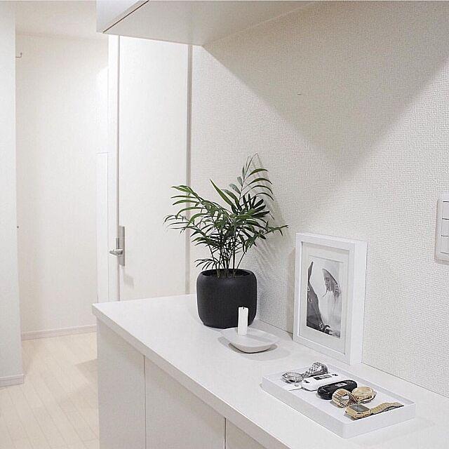 Entrance,Muji,無印良品,MUUTO,テーブルヤシ,玄関,玄関ホール Macaroniの部屋