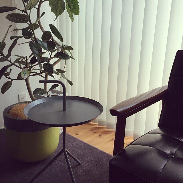 Lounge,カリモク60,HAY,北欧,観葉植物 443の部屋