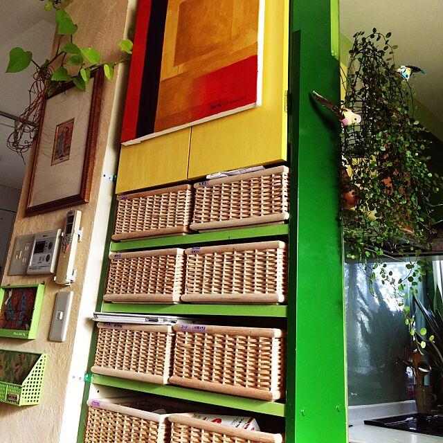 My Shelf,iPhone dock,iPhone充電場所,ポトス,無印良品かご,DIY,ペンキ,アート,カラフル,カラフルな部屋,アイアンプランツ,無印良品 ,Flying Tinger,小鳥の雑貨,ワイヤープランツ kimishigureの部屋