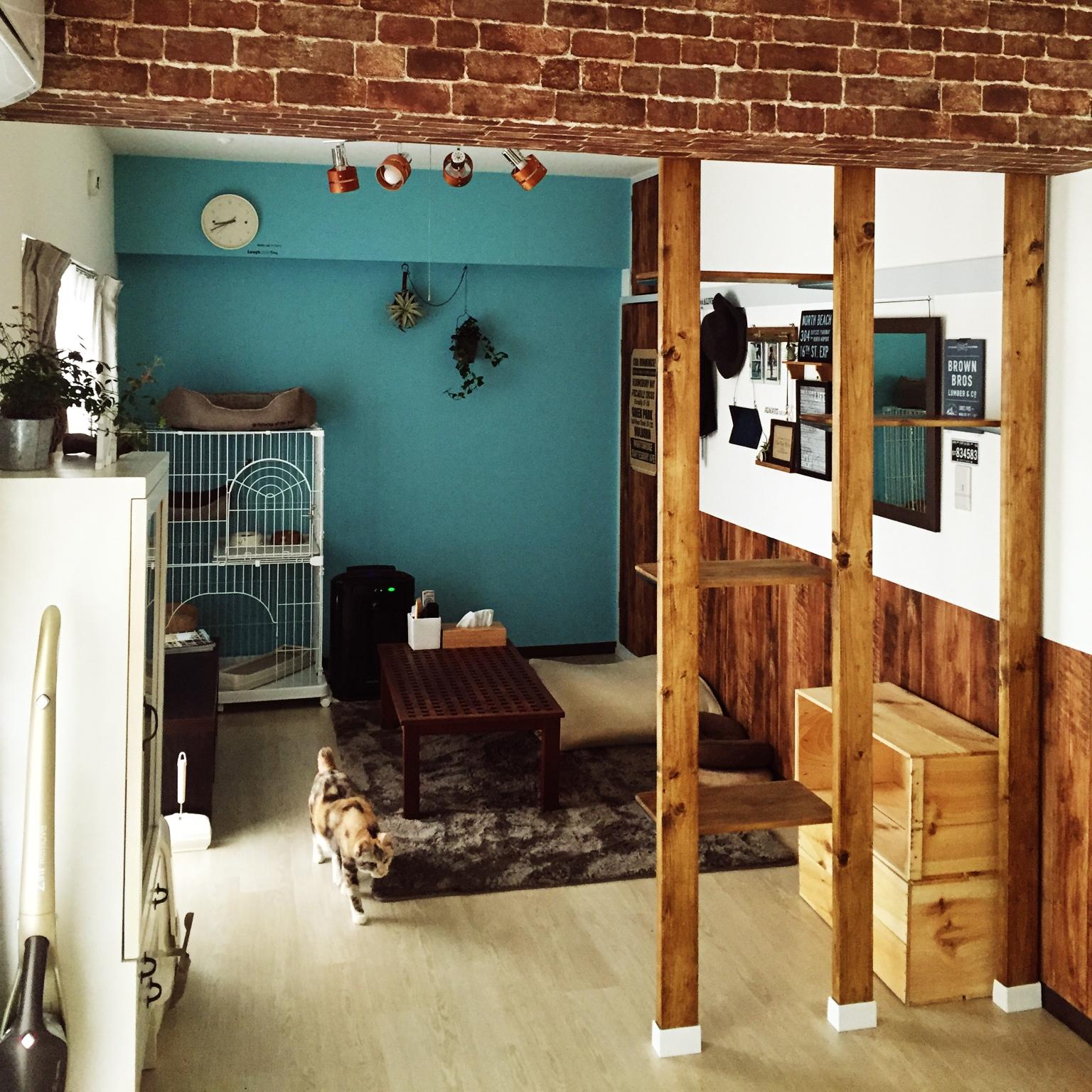 女性で、1LDK、家族住まいの照明/セリア/りんご箱/キャットウォーク/DIY/猫のいる部屋…などについてのインテリア実例を紹介。