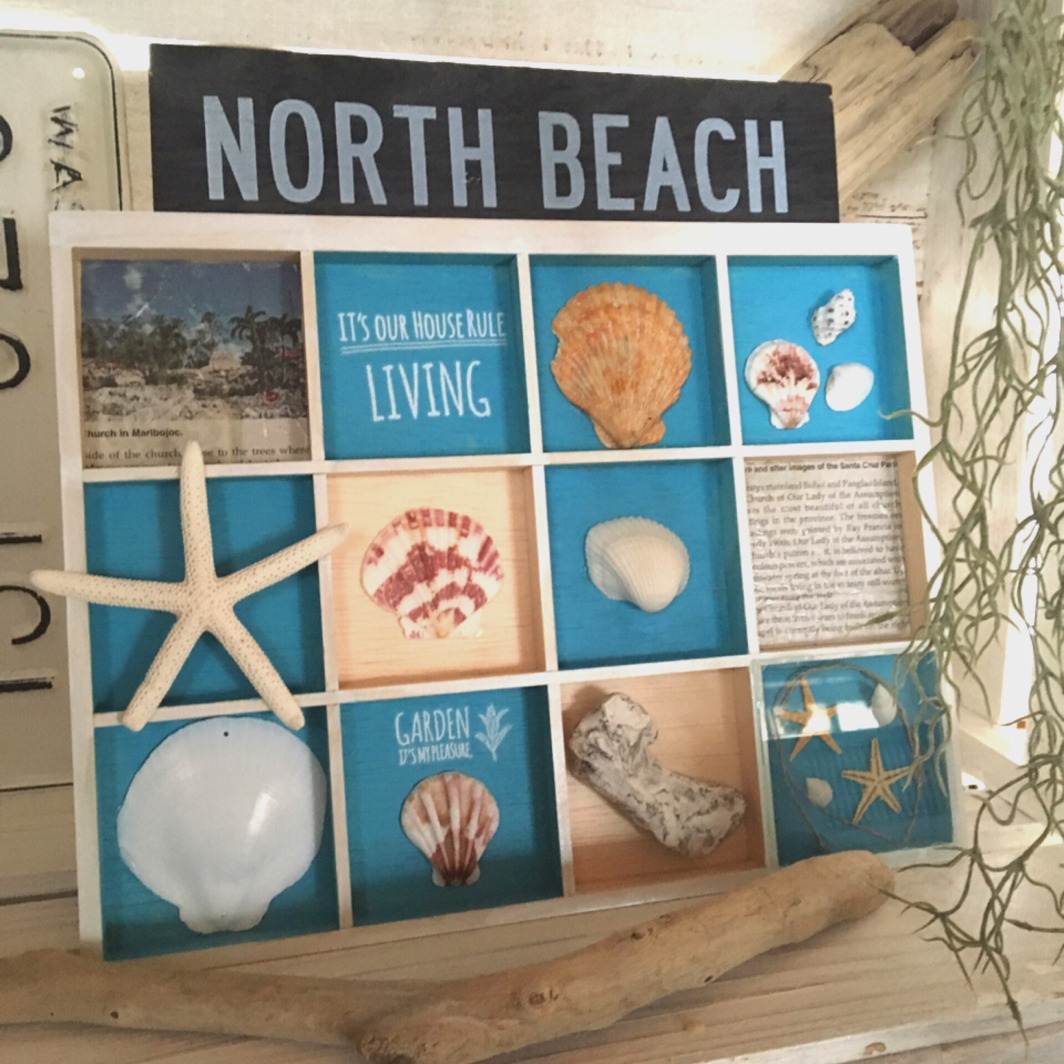 100均の貝殻を使った夏にぴったりなDIYアイディア10選 | RoomClip mag | 暮らしとインテリアのwebマガジン