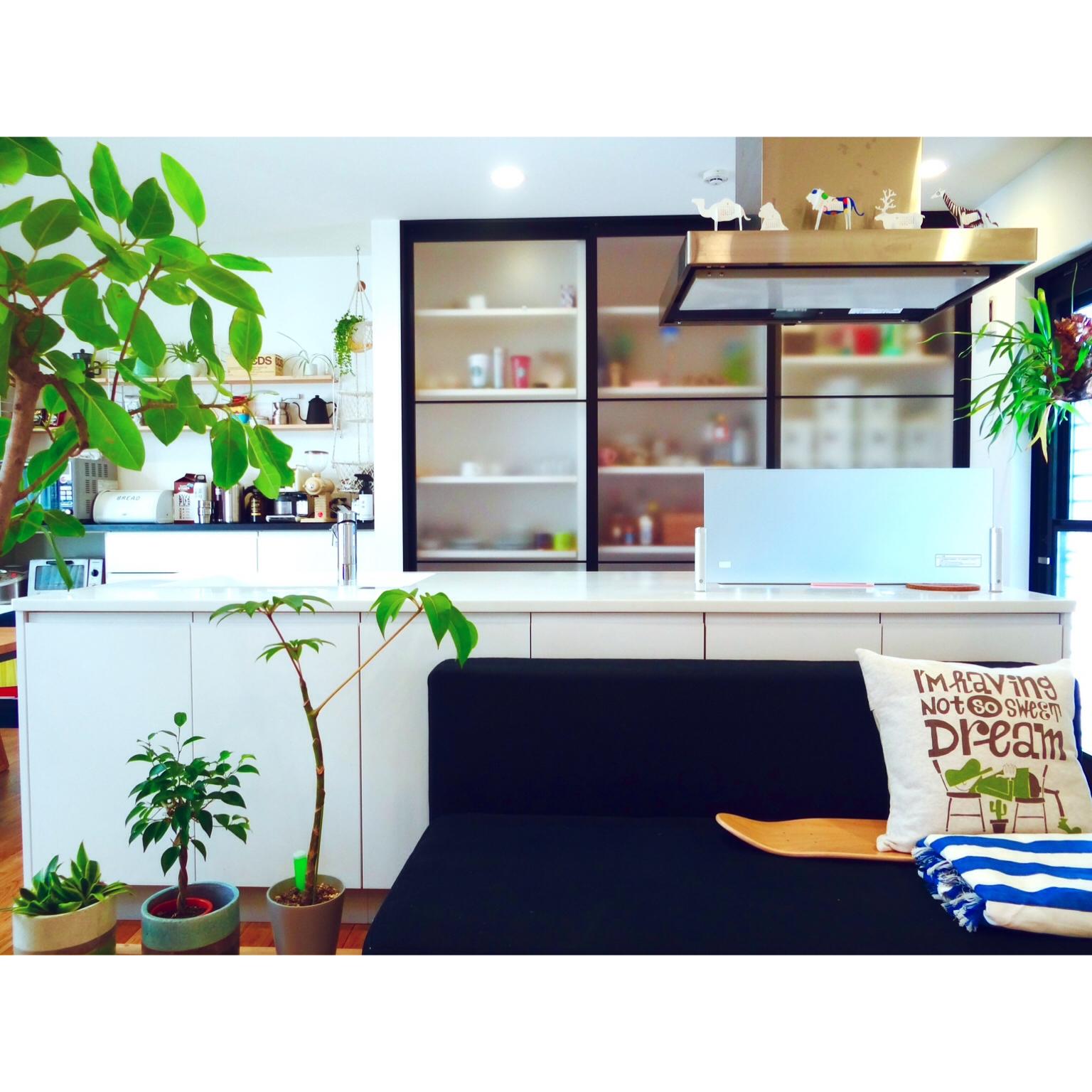 「まるでボタニカルガーデン!自然の魅力あふれる癒し空間」憧れのキッチン vol.27 masakichiさん