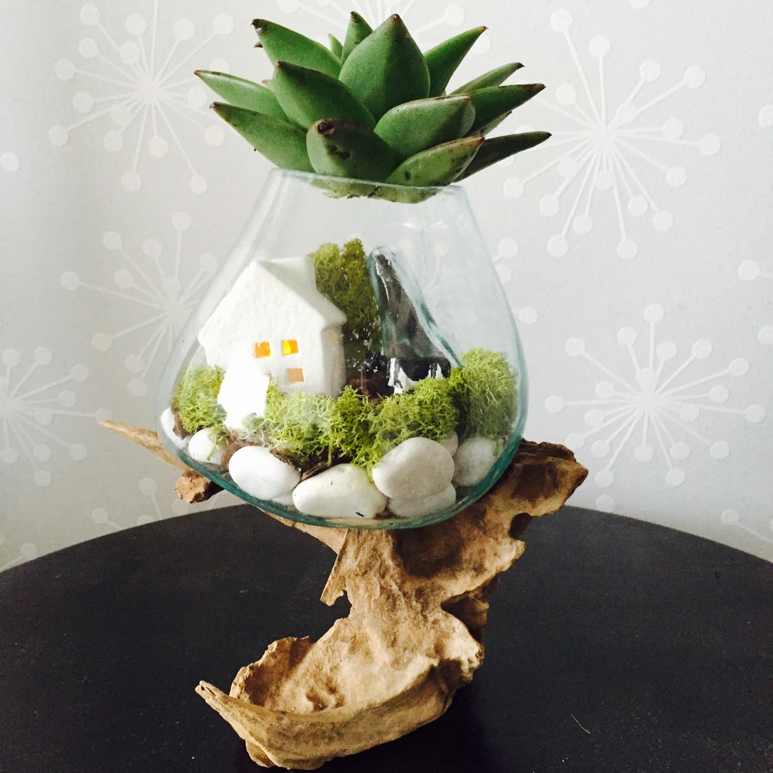 【テラリウムの作り方】苔や多肉植物で小さなお庭を作りませんか?
