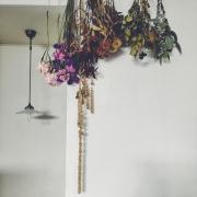 ワイヤーバスケット/アイビー/テラコッタ鉢植え/コウモリラン/一人暮らし…などに関連する他の写真