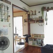 植物/観葉植物/一人暮らし/Overviewに関連する他の写真