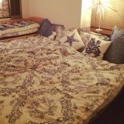 ニトリでコーディネートする素敵なベッドルーム