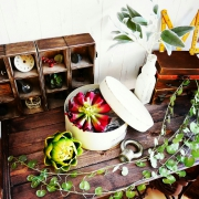 Overview/ドライフラワー/IKEA/SOLSO FARM/無印良品…などに関連する他の写真