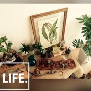 暮らしの道具/丁寧な暮らしがしたい/暮らしの愛用品/TRUCKケトル/IH周辺…などに関連する他の写真