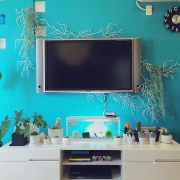 和室/植物のある暮らし/散財部/Overviewに関連する他の写真
