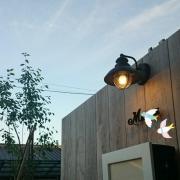 いつもいいねやコメありがとうございます♡/玄関照明/苔玉/スパニッシュモス/エアープランツ…などに関連する他の写真