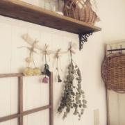 SANGETSU/男前/ツリー/クリスマスツリー/壁紙/フェイクグリーン…などに関連する他の写真