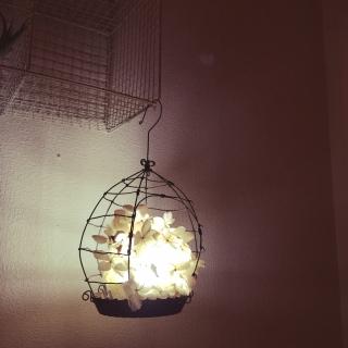 照明の人気の写真(RoomNo.1731066)