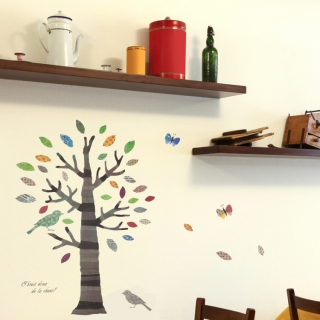 SquareWallsticker's room photos