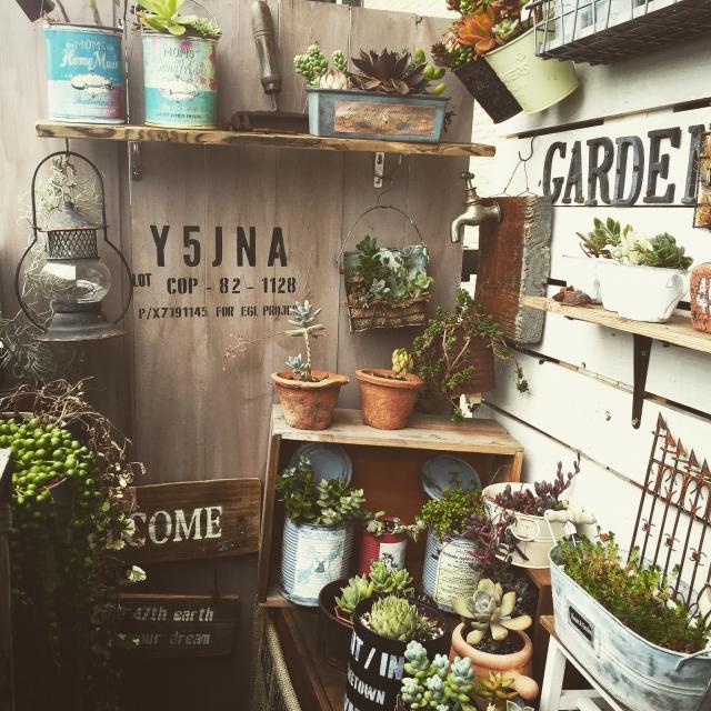 DIY,多肉植物,板壁,多肉部♡,NO GREEN NO LIFE,junkarrowさん♪のインテリア実例 | RoomClip (ルームクリップ)