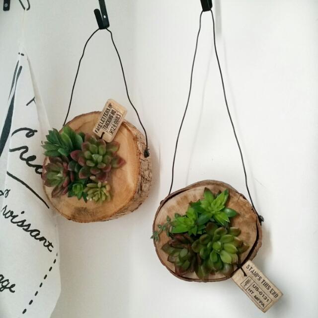 100均のグリーンをカフェ風インテリアにアレンジする方法